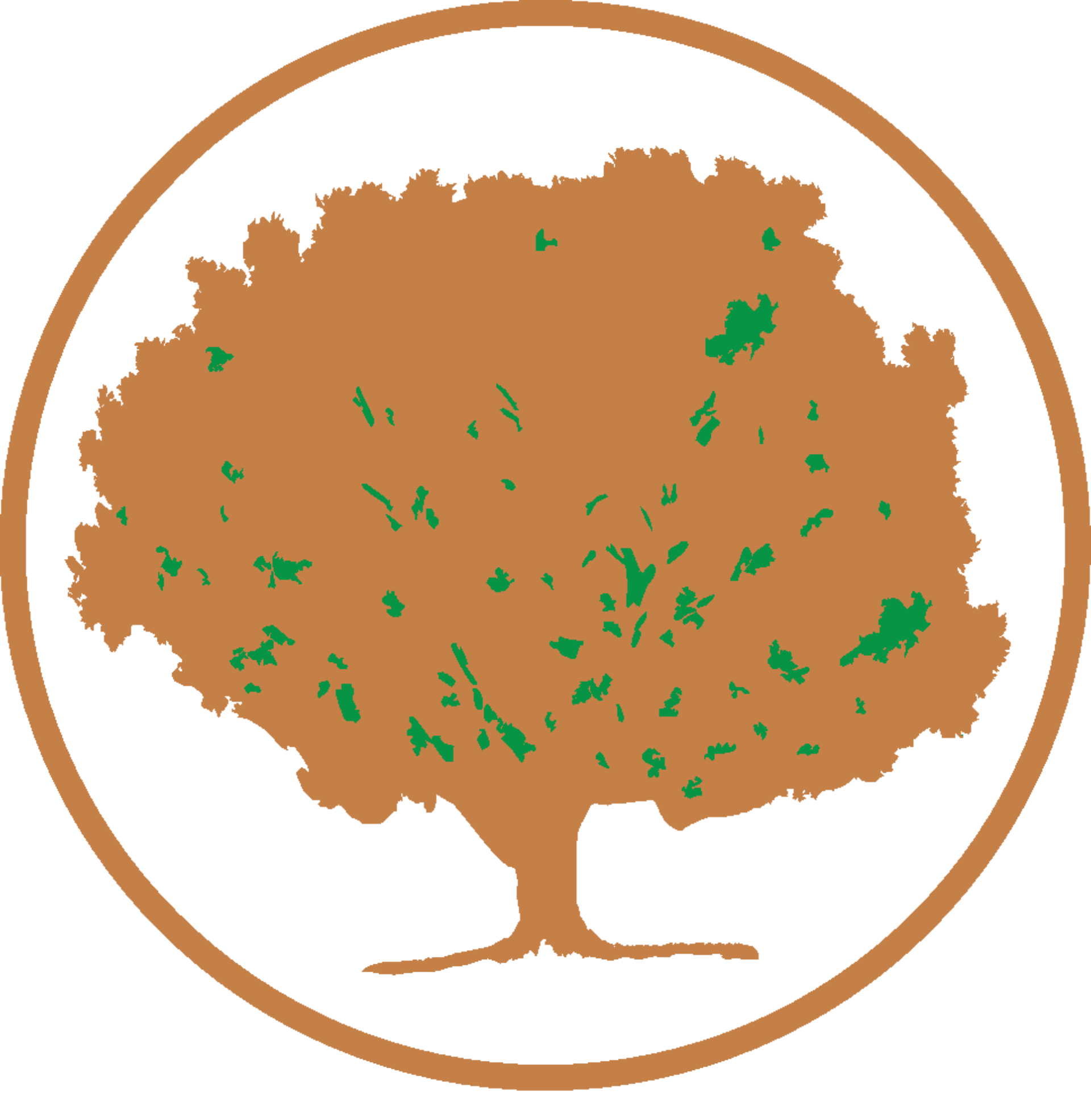treeworker GmbH